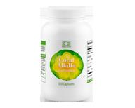 Coral Alfalfa erba medica