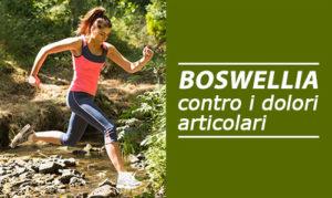 Coral Boswelia contro i dolori articolari