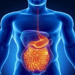 digestione sana coral club